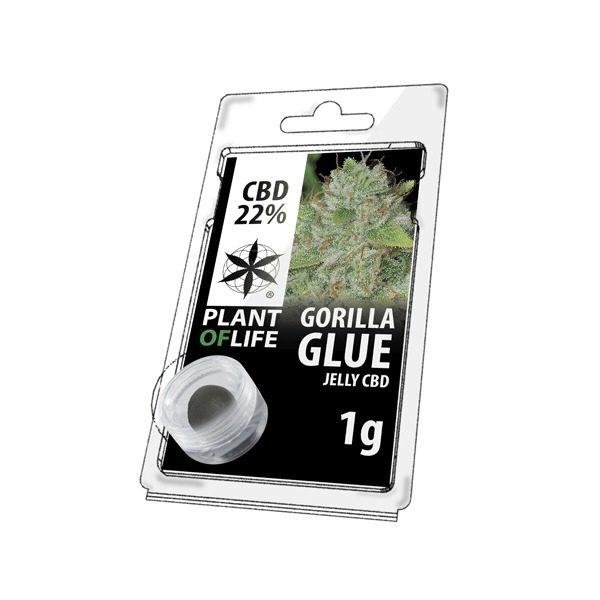 Résine 22% CBD de Gorilla Glue – Plant of Life® (Boite de 10pcs)