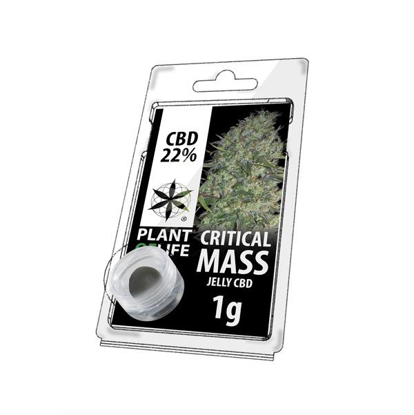 Résine 22% CBD de Critical Mass – Plant of Life® (Boite de 10pcs)