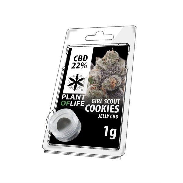 Résine 22% CBD de Girl Scout Cookies – Plant of Life® (Boite de 10pcs)