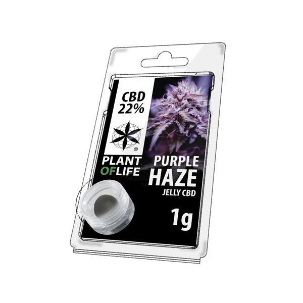 Résine 22% CBD de Purple Haze – Plant of Life® (Boite de 10pcs)