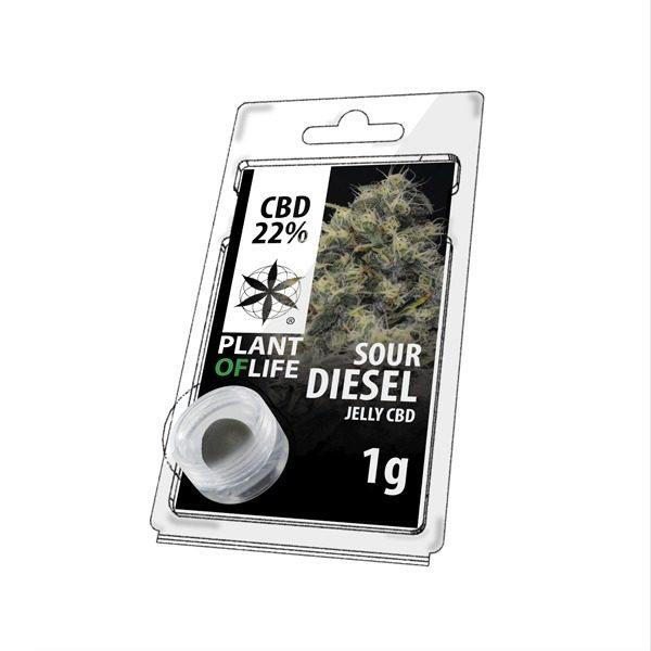 Résine 22% CBD de Sour Diesel – Plant of Life® (Boite de 10pcs)