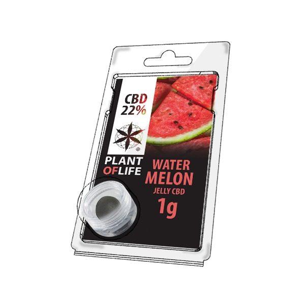 Résine 22% CBD de Watermelon – Plant of Life® (Boite de 10pcs)